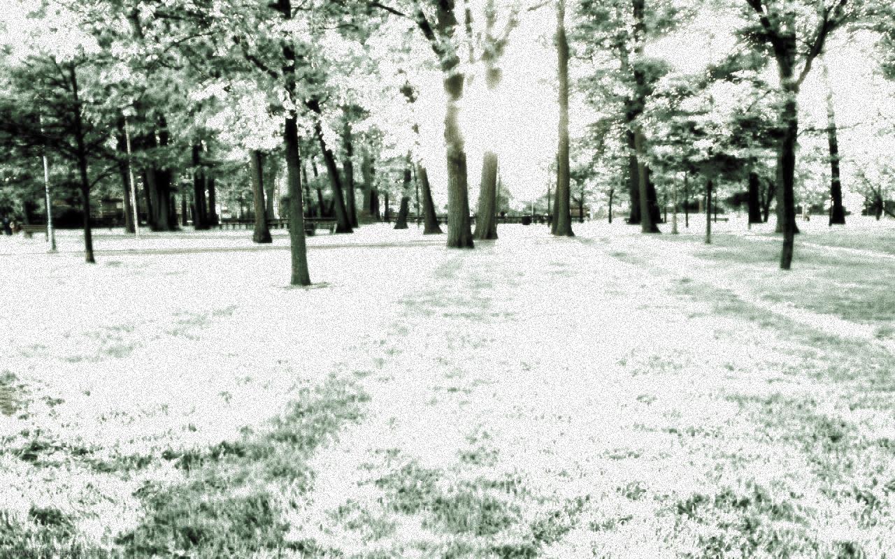 infrarojo.jpg