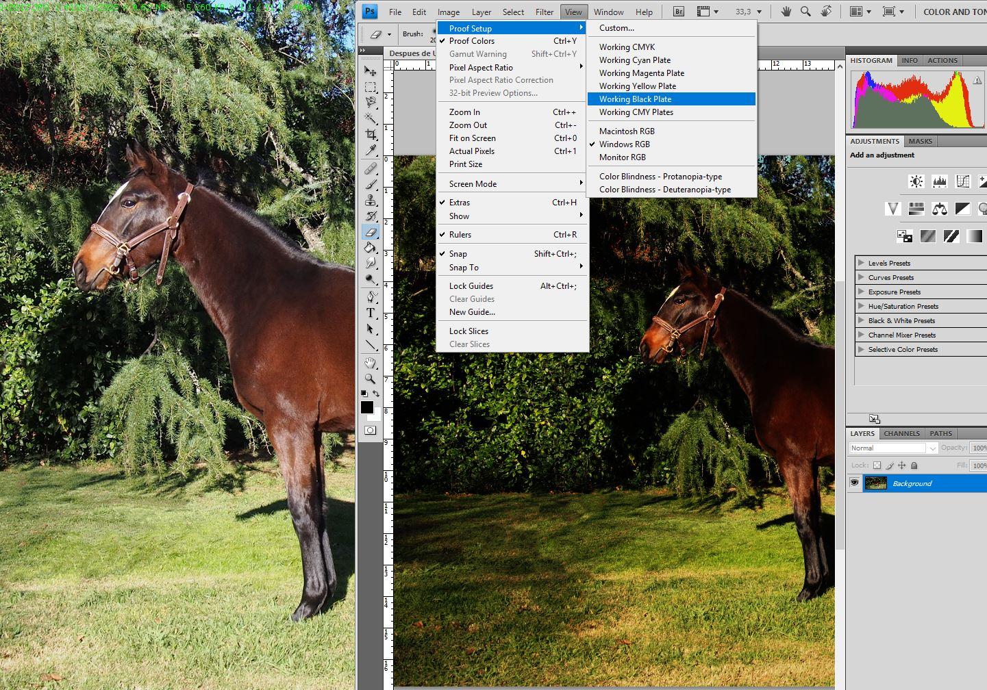 Prob iluminacion Photoshop 1.JPG
